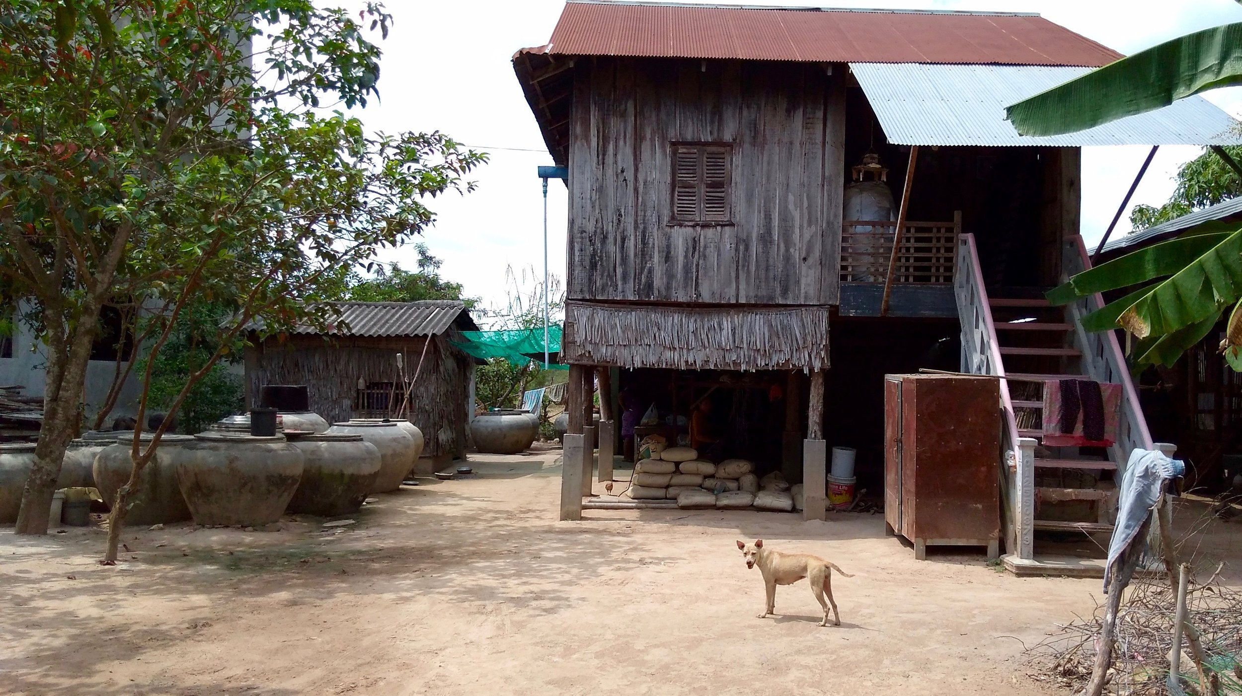 A traditional Cambodian wooden stilt home, where weavers work at looms underneath their house.