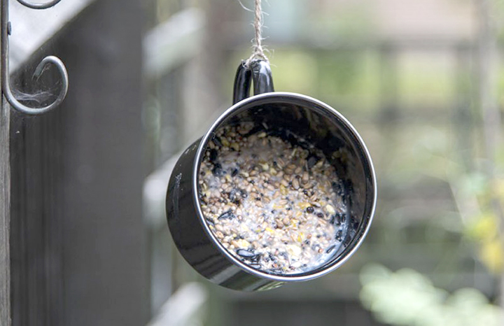 DIY-Bird-Feeder-Post-1.jpg