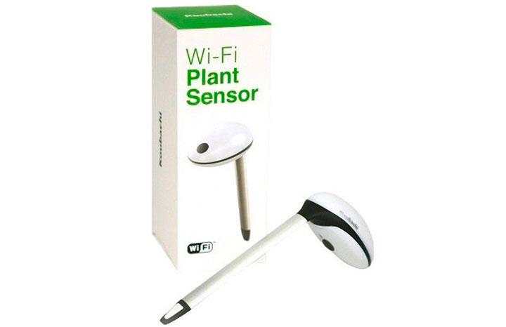 Koubachi-Plant-sensor.jpg