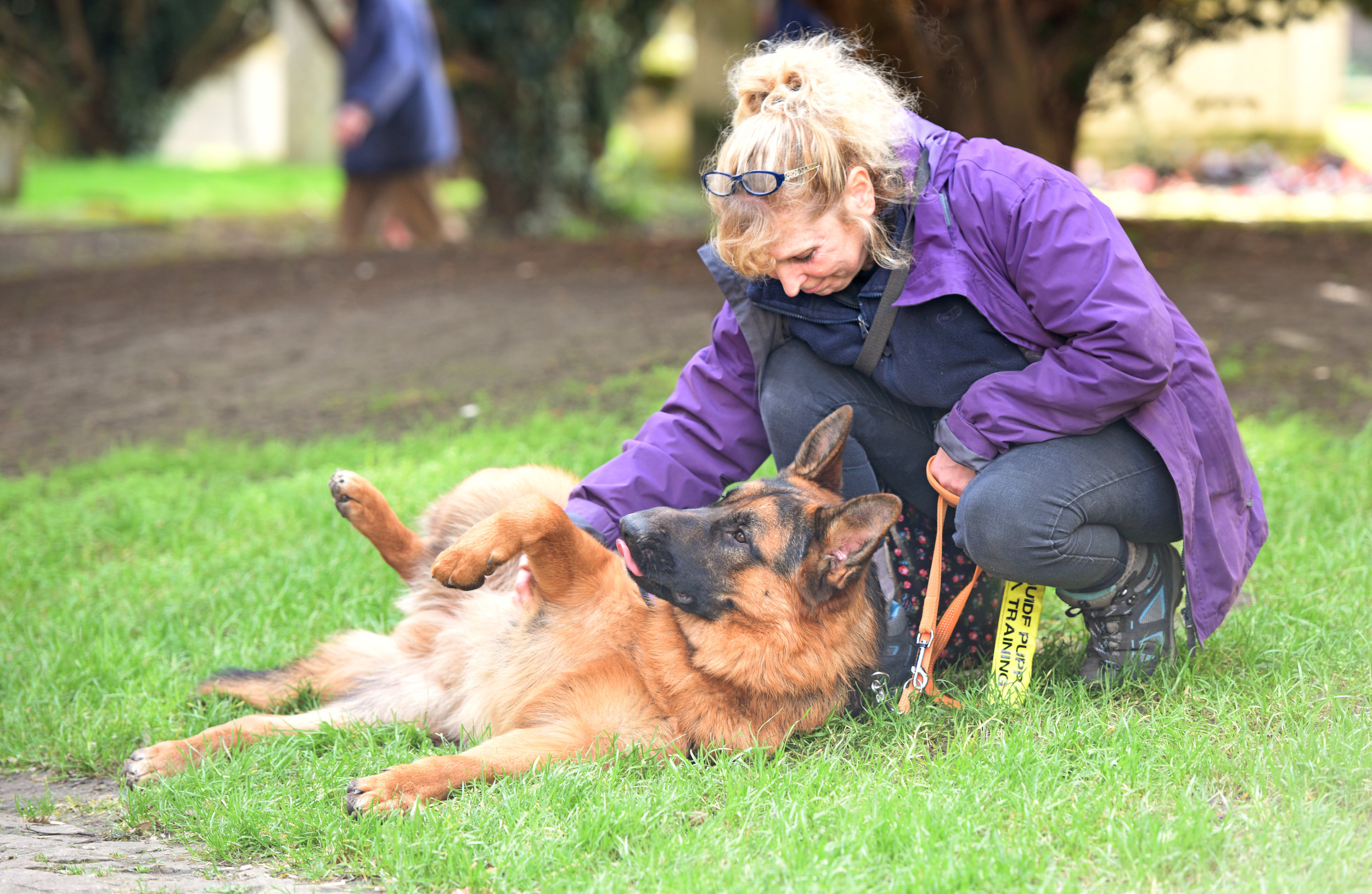 They might be big working dogs but they're real softies, too