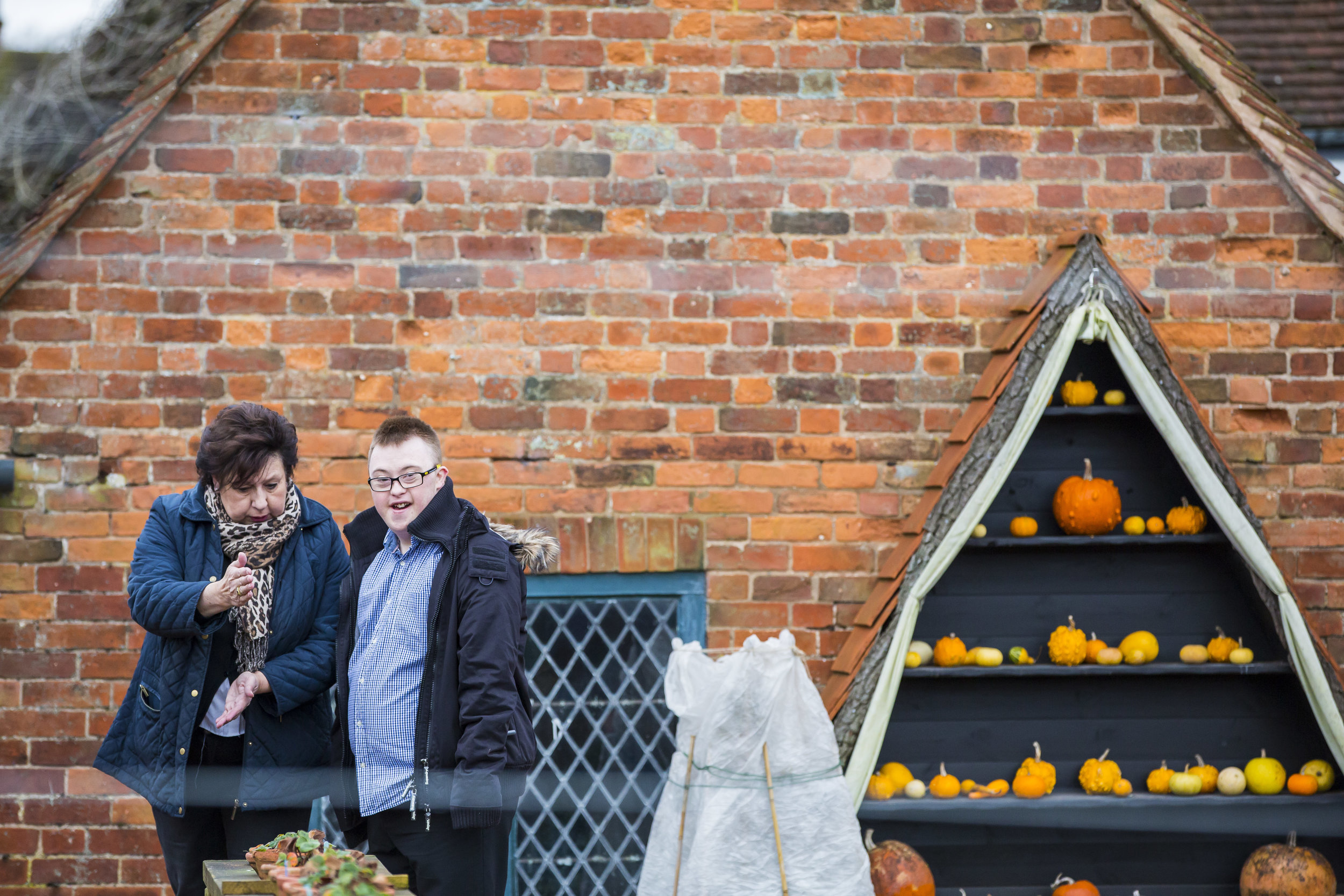 1231155 Autumn fest National Trust Images Chris Lacey.jpg