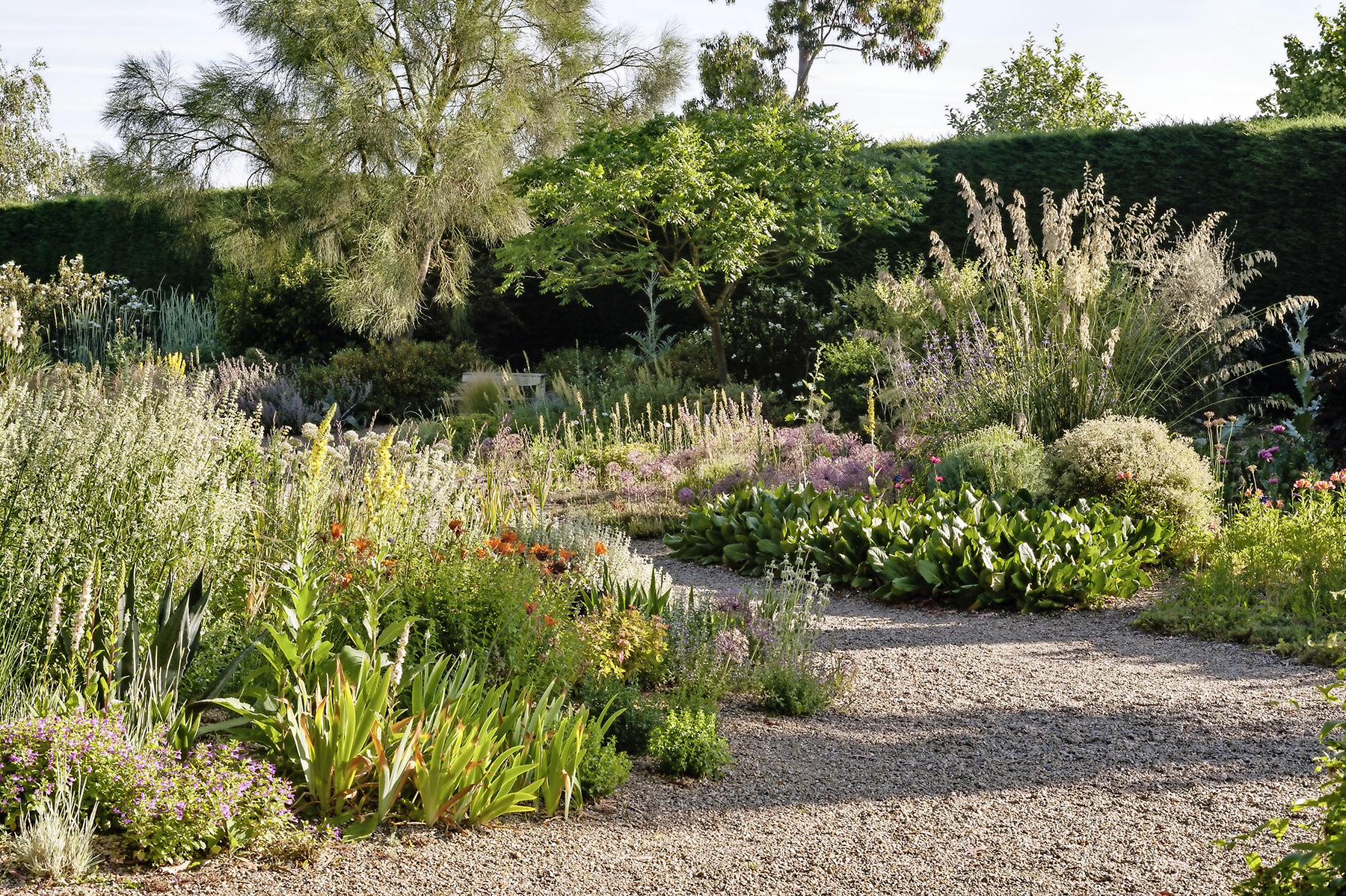 Beth Chatto garden, Essex.jpg