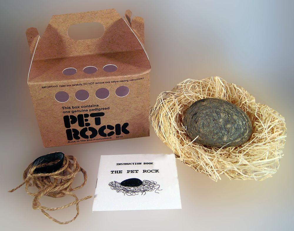 pet-rock-toy.jpg