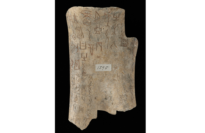 chinese-oracle-bones-british-library-harry-potter.jpg