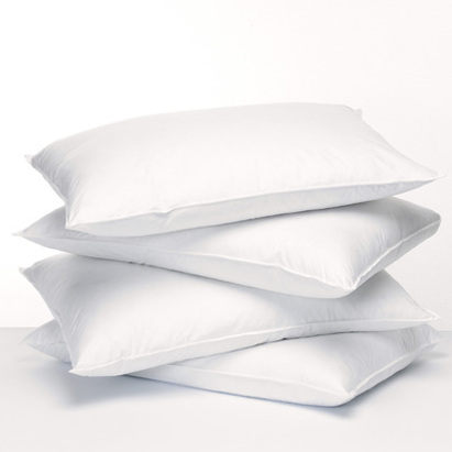featherfresh-allergy-pillow.jpg