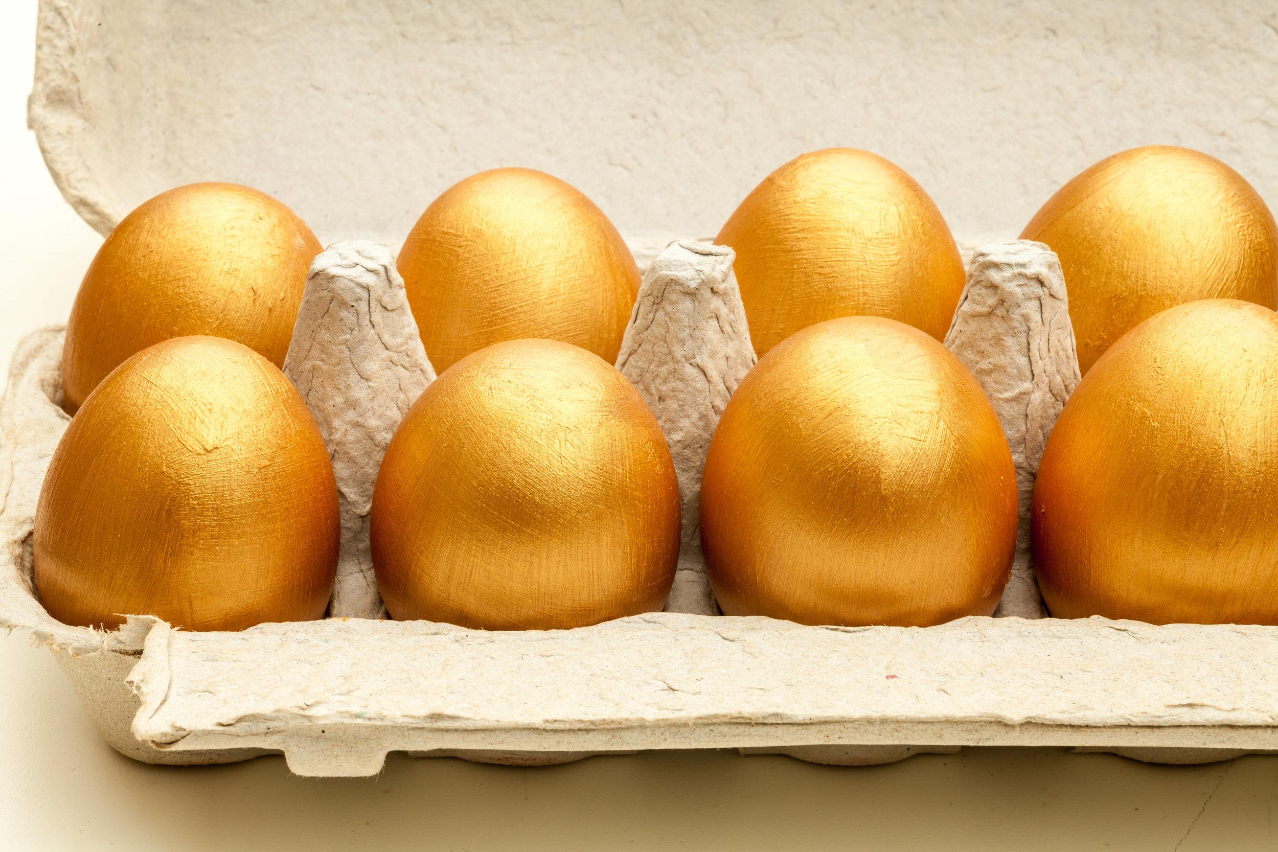 golden eggs pension.jpg