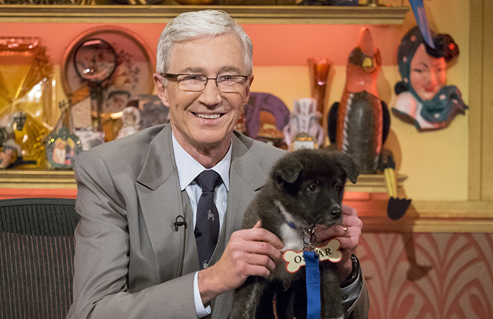 paul-ogrady-dog-smile.jpg
