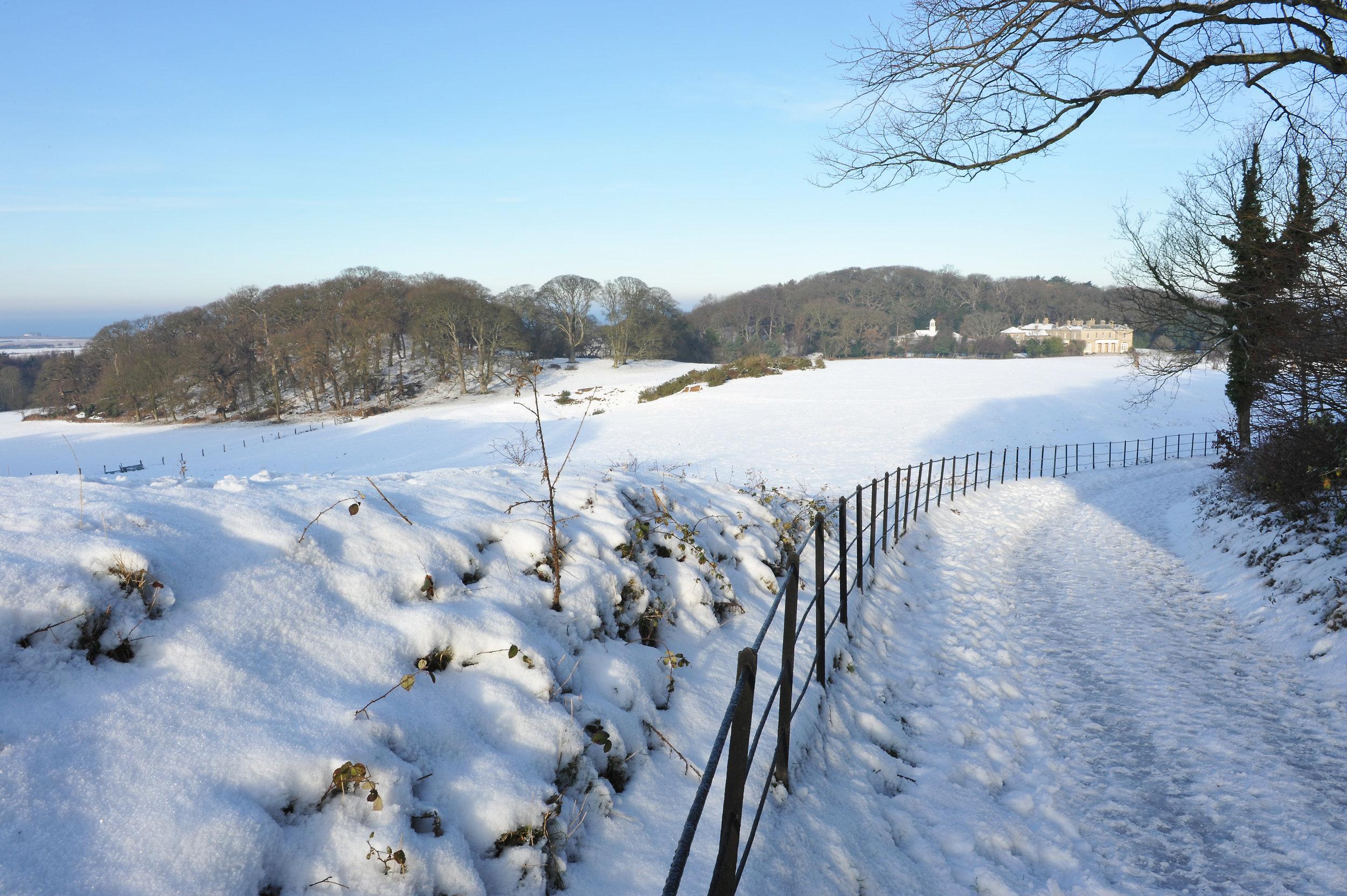 Sherringham Park National Trust Images Fisheye Images 1203294.jpg