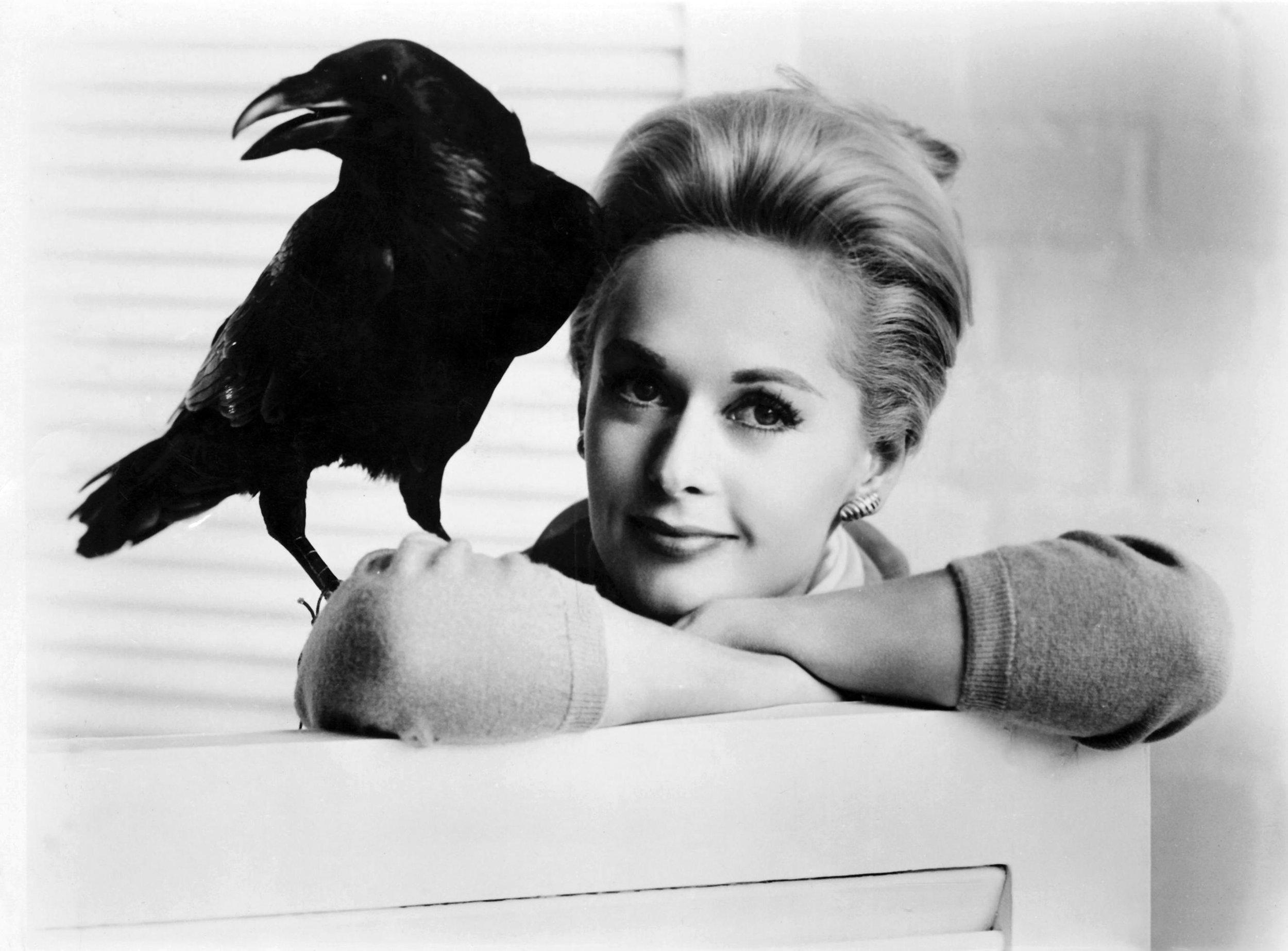 tippi-hedren-crow.jpg