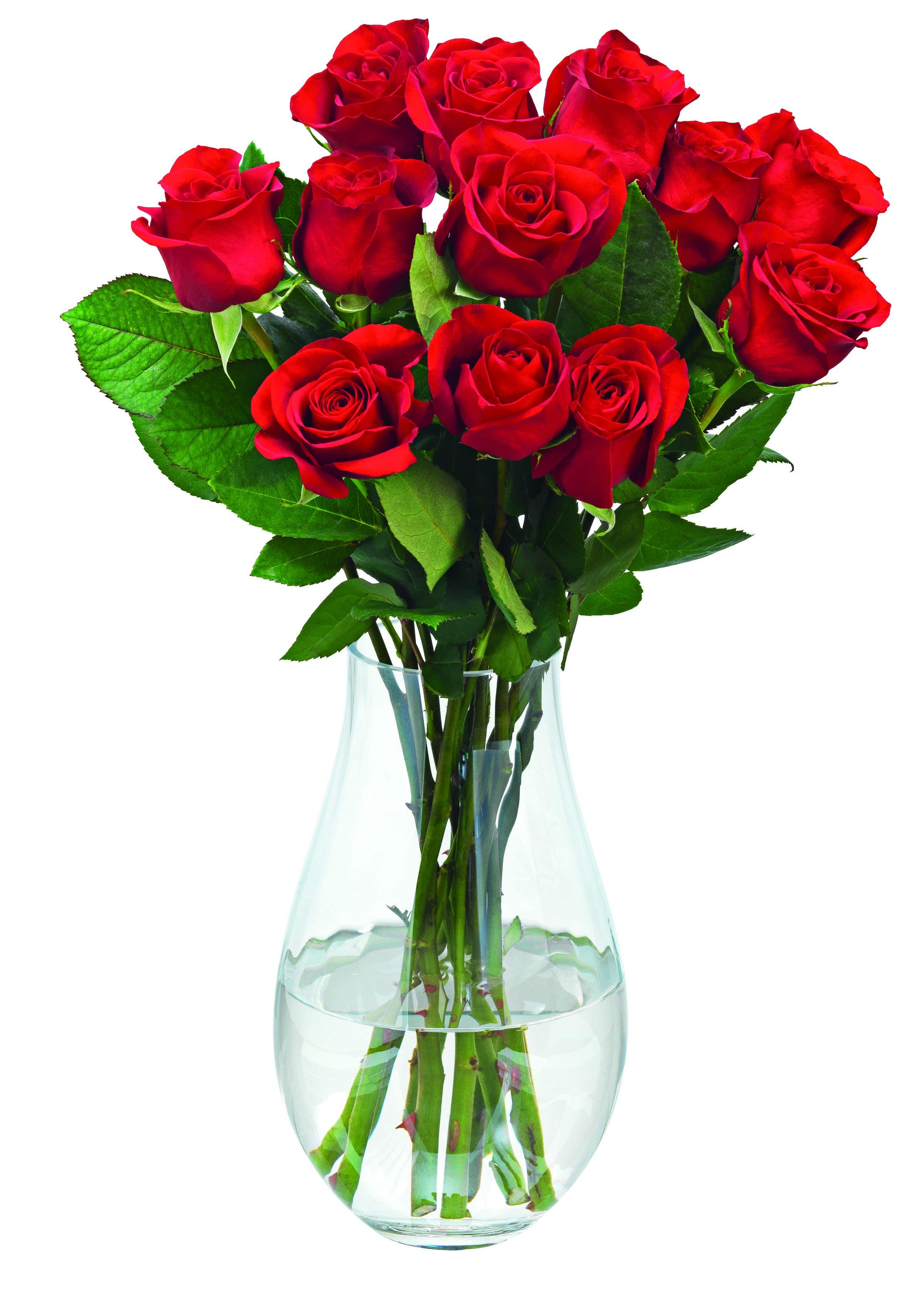 Tesco's dozen roses for £18