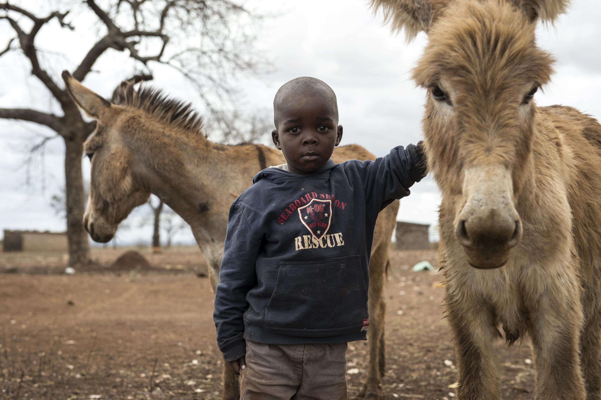 Children&Donkeys_AFP012hr.jpg
