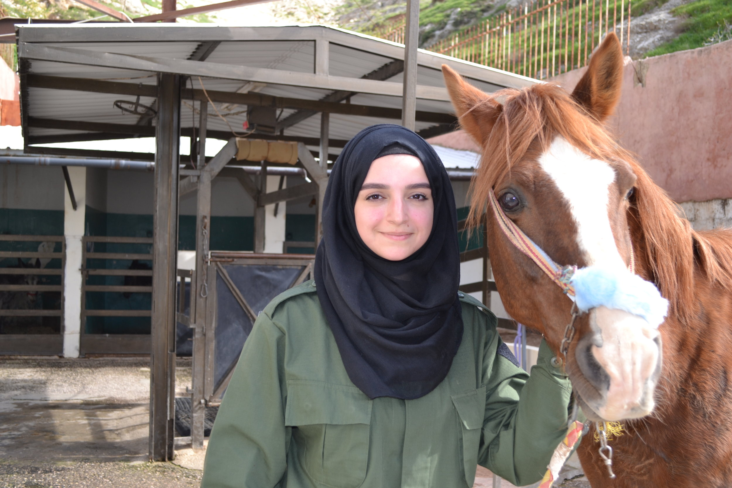 horse-spana-charity.JPG