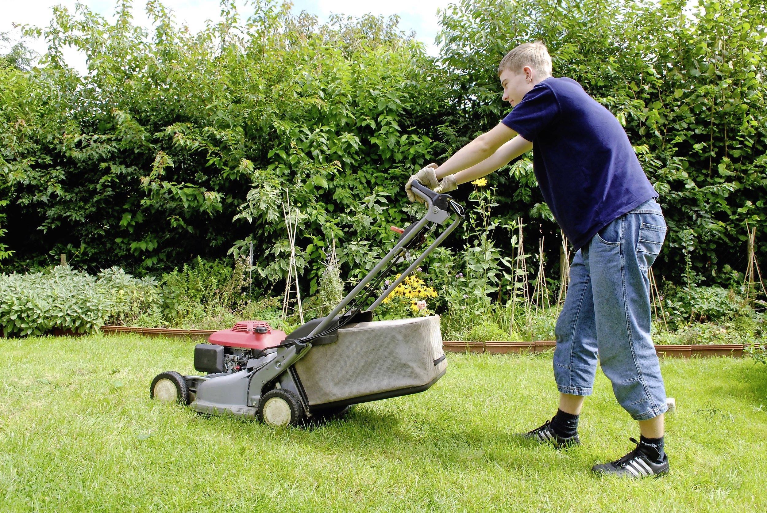 love your lawn.jpg