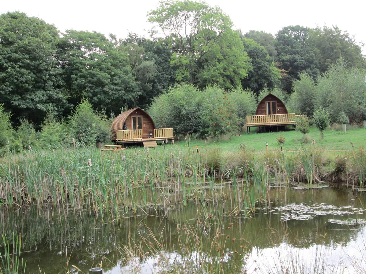Six cabins are located around a freshwater pond brimming with wildlife