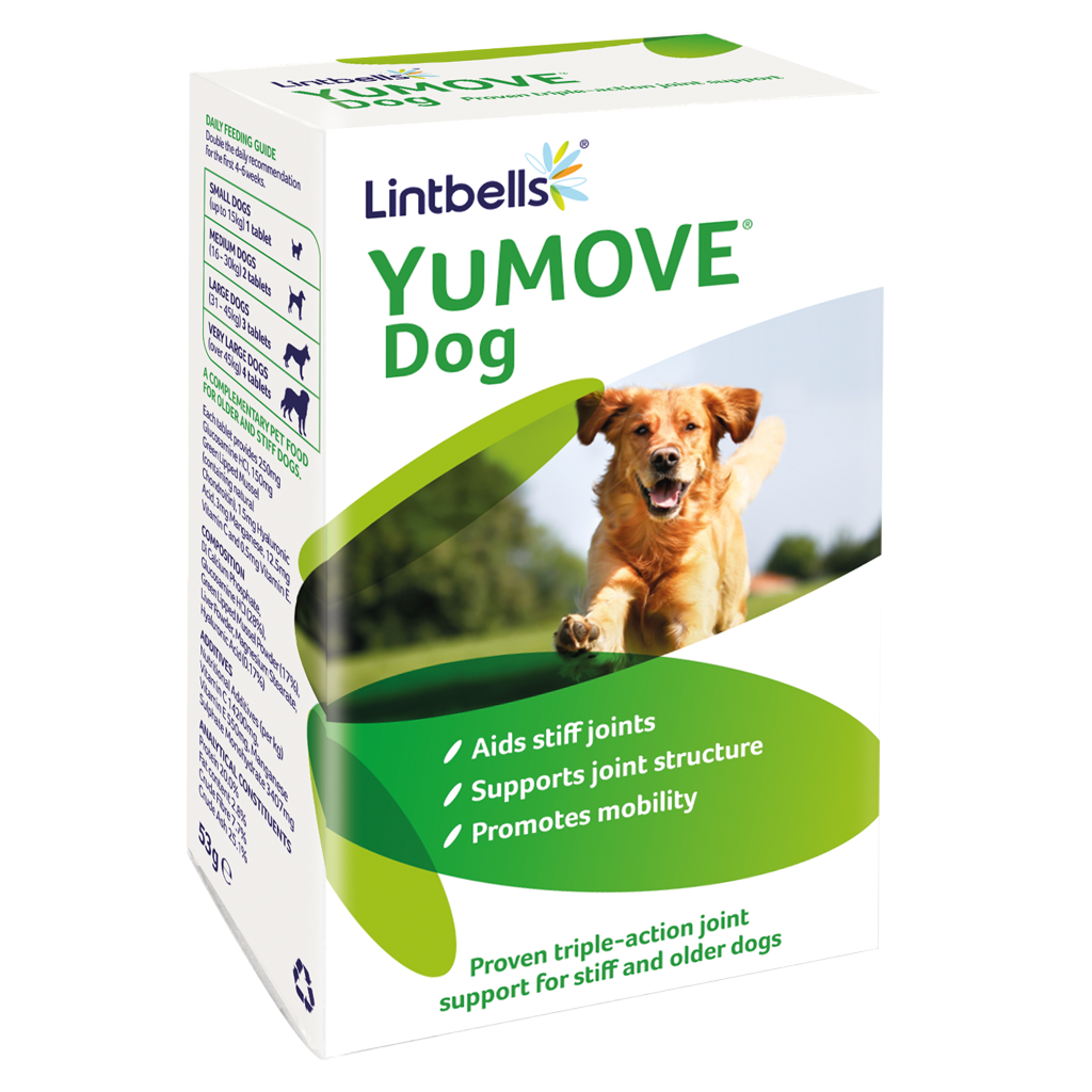 YouMove for stiff and older dogs