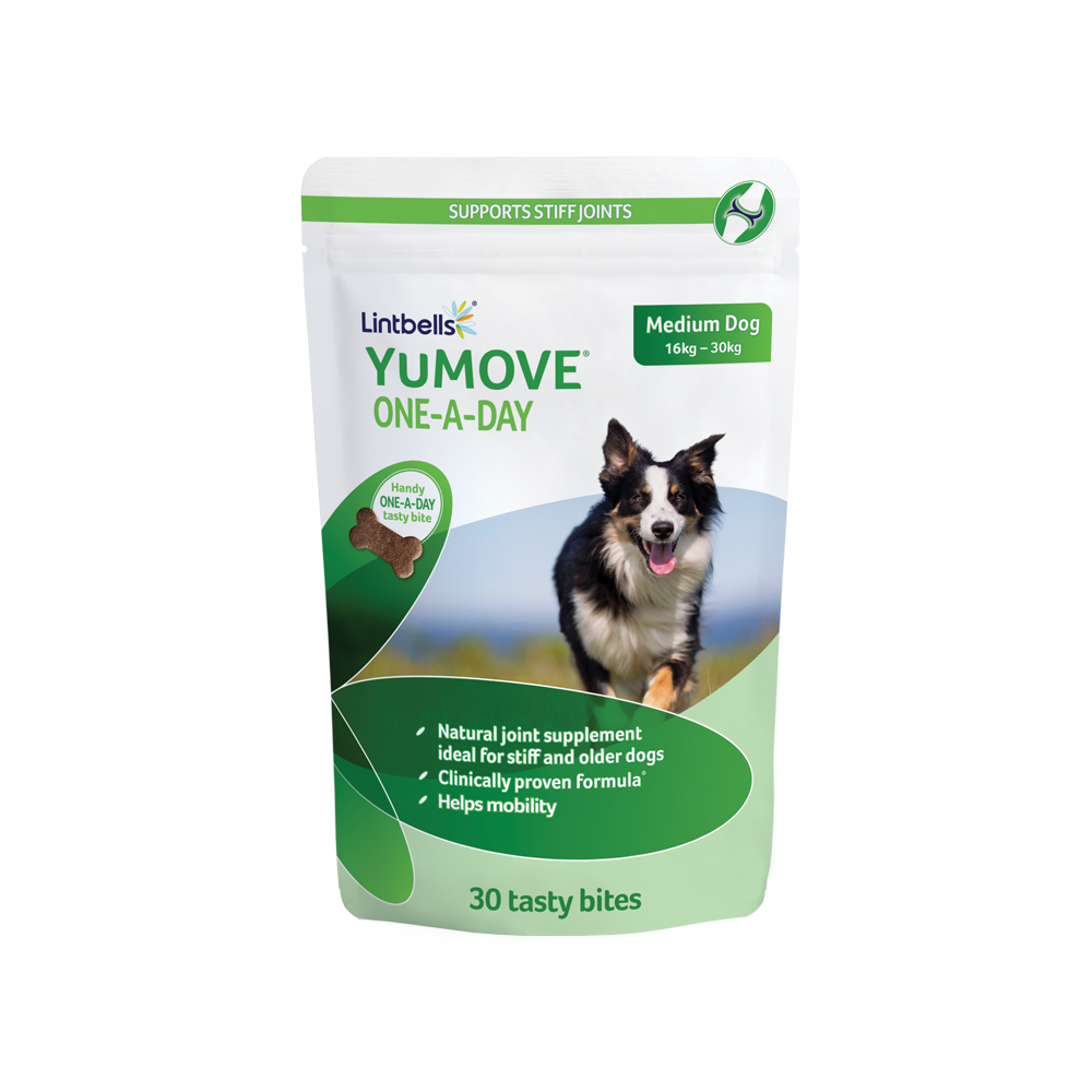 YuMOVE-ONE-A-DAY-30-Medium-Pack.png