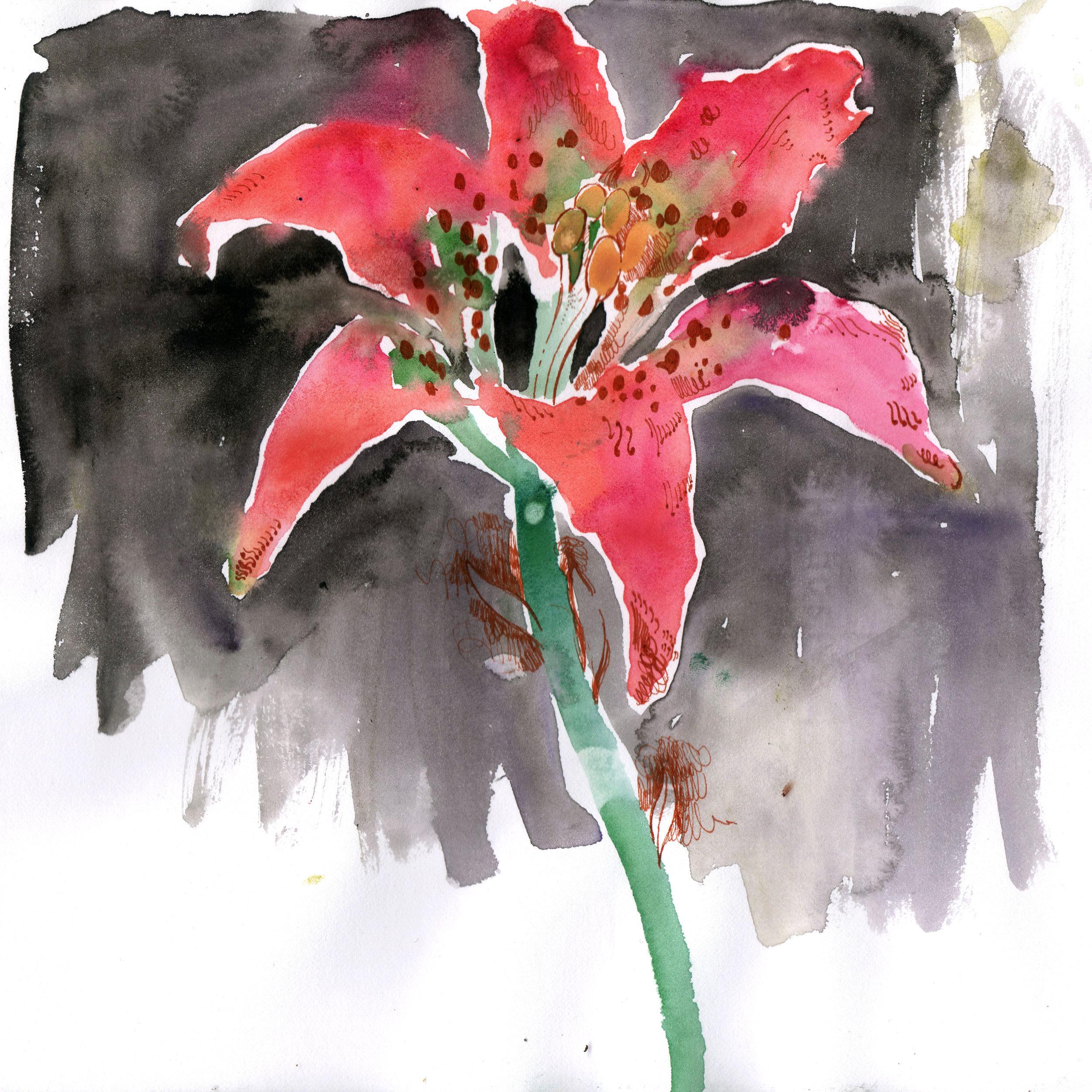 Untitled Flower