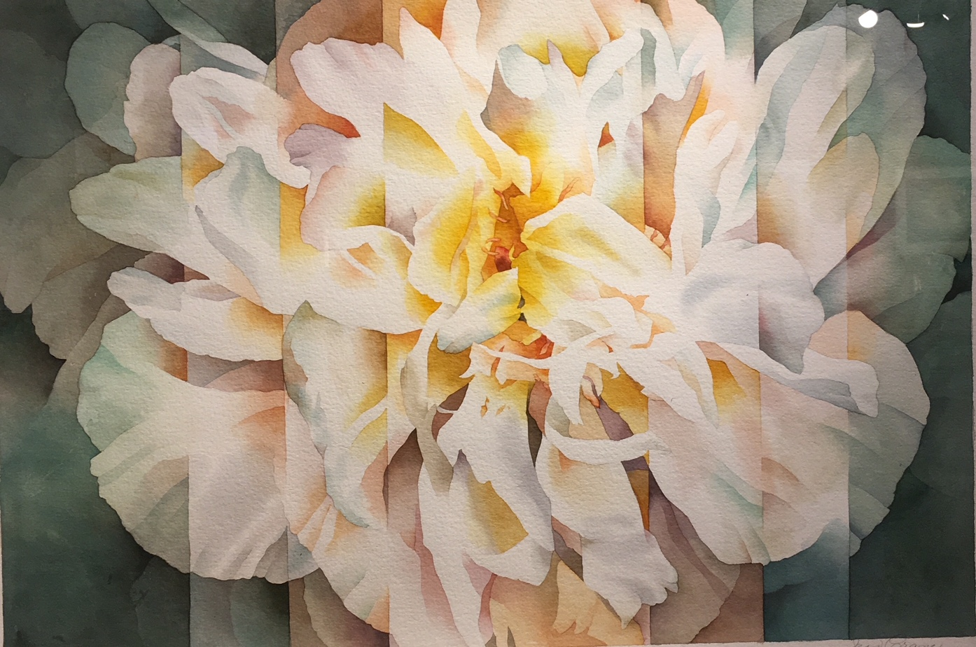 Peony Abstracted