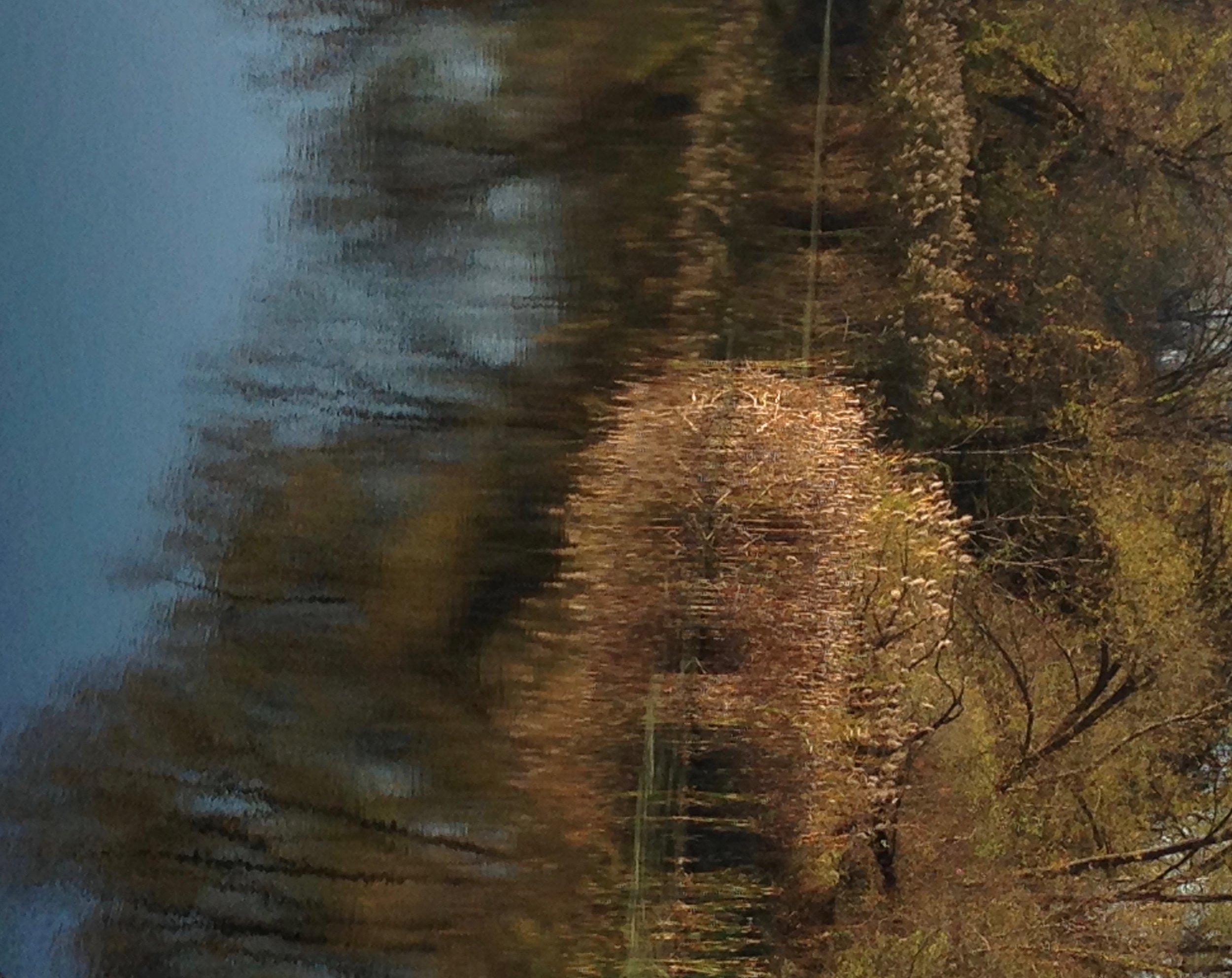 Reflection&Reflexion2.jpg