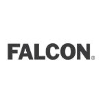 Falcon_Gray90.png