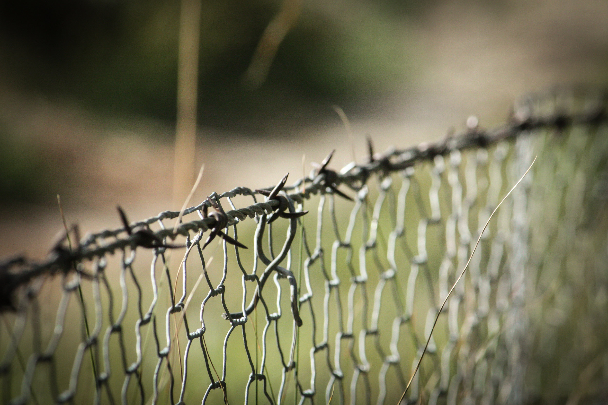 Canva - Barbwire on Top of Cyclone Fence.jpg