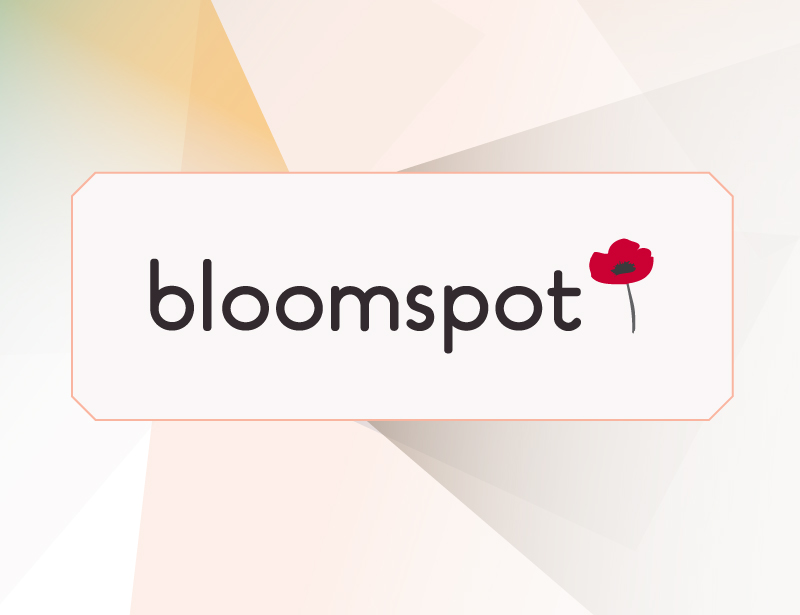 Branding  + Web Design    Bloomspot  view