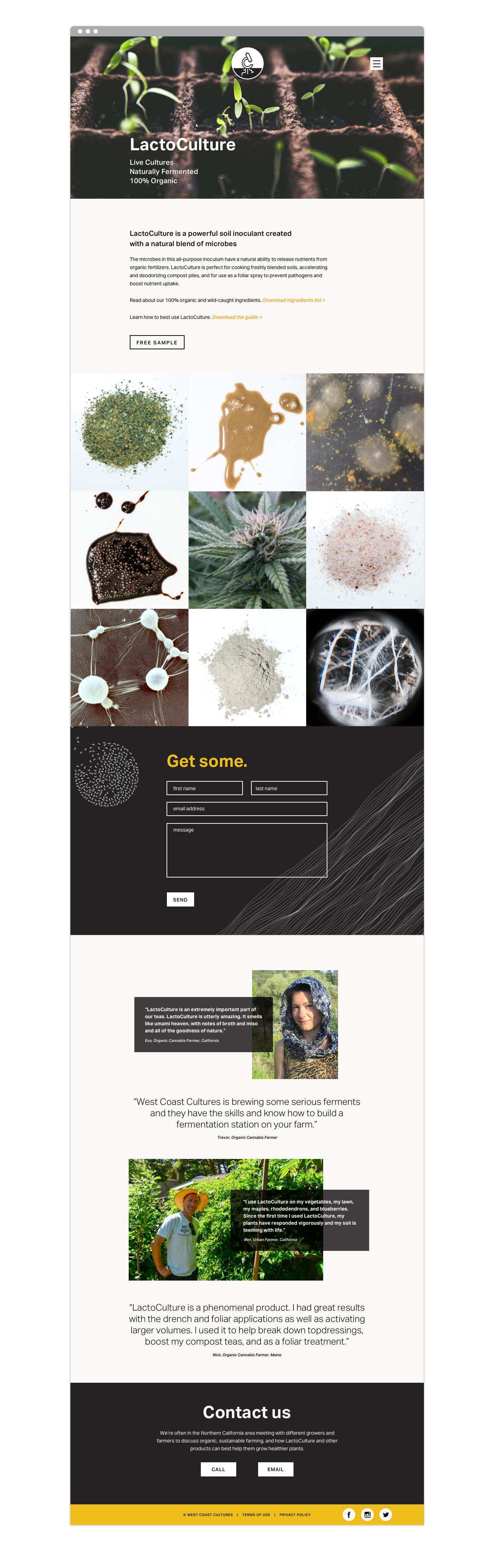 Website Copy 2.jpg