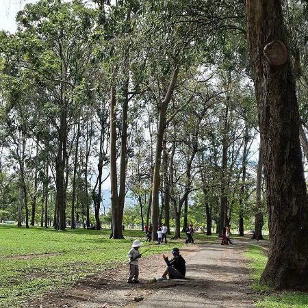 parque-la-sabana.jpg