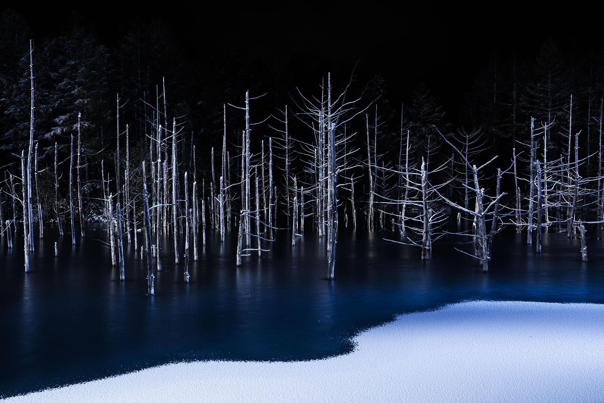 190283_206440_5_ © Hiroshi Tanita, Japan, Winner, Open Competition, Nature, 2017 Sony World Photography Awards.jpg