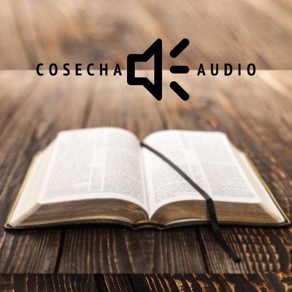 cosecha_audio.jpg