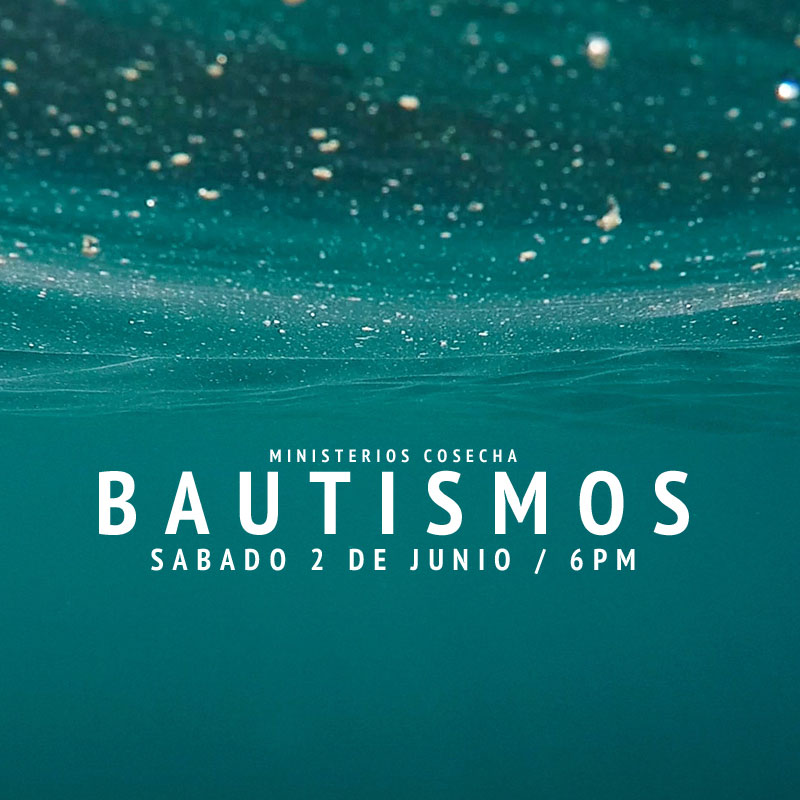 cosecha bautismo