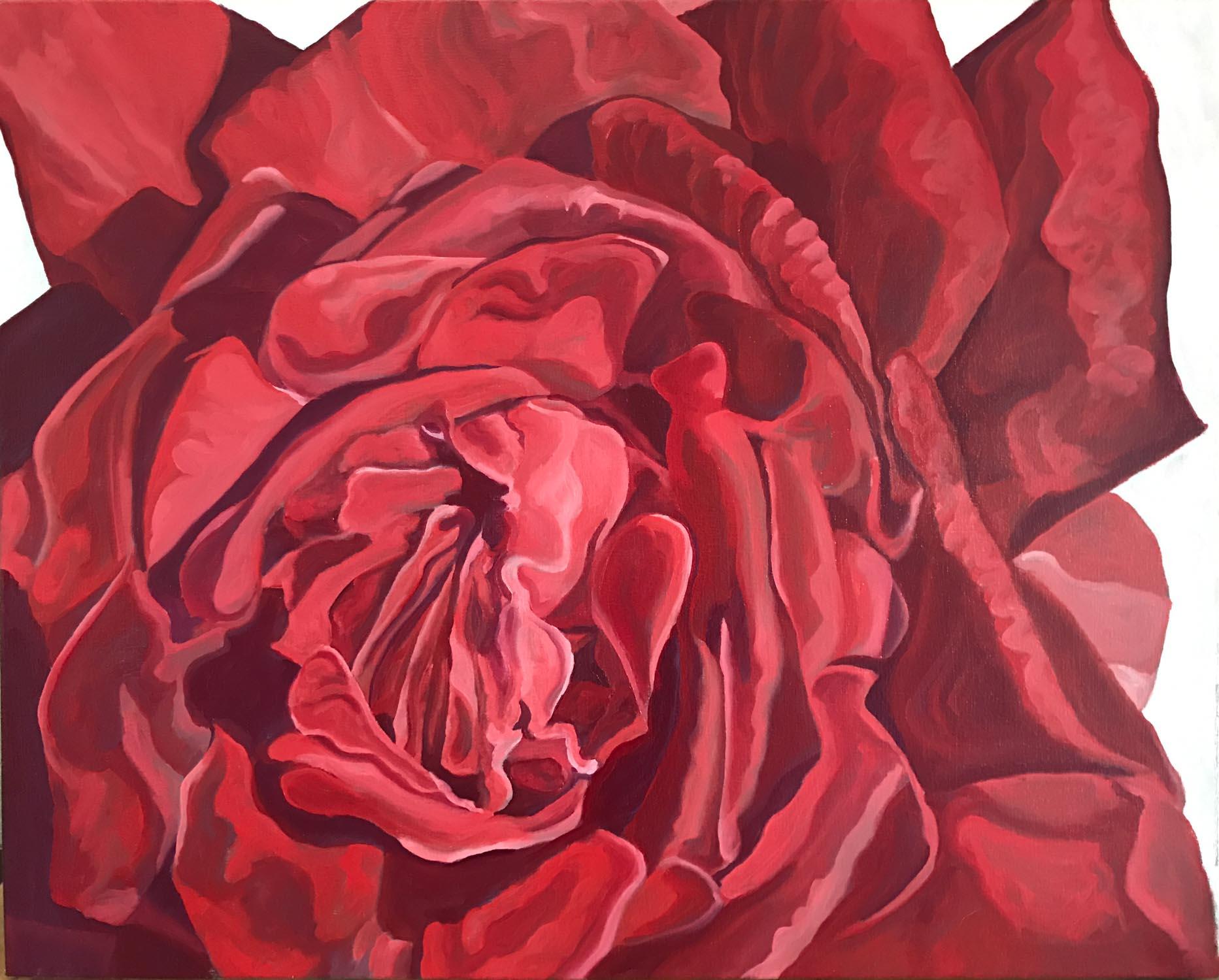 Rose in Cadmium Red and Quinacridone Violet