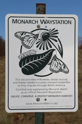 Monarch Way Station  - We are an accredited Monarch Way Station having dedicated large fields to the growth of milkweed to support the Monarchs on their journey