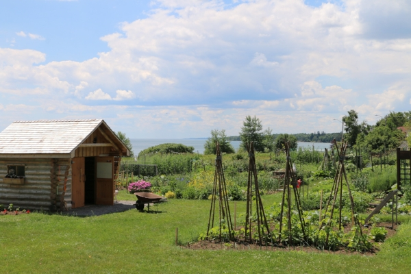 Organic Garden - Our land is home to the extensive St Joseph's Organic Community Garden.