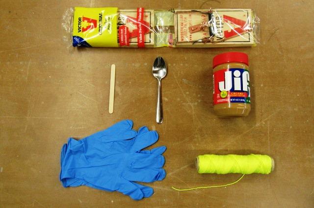 Rat trap baiting supplies