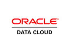 oracle_data_cloud_-_Google_Search.png