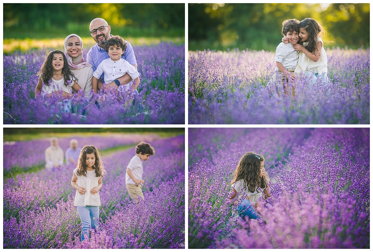 Joy of LIfe Photography Orangeville Lavender Sessions 2