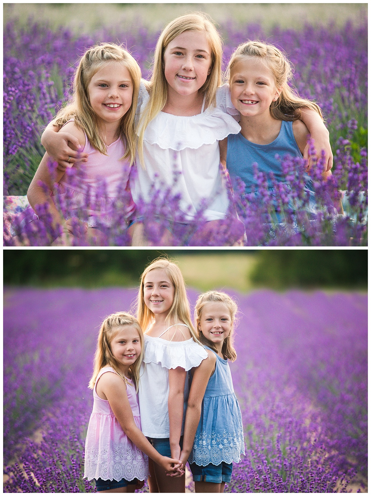 Joy of Life Photography Orangeville Lavender Sessions 3