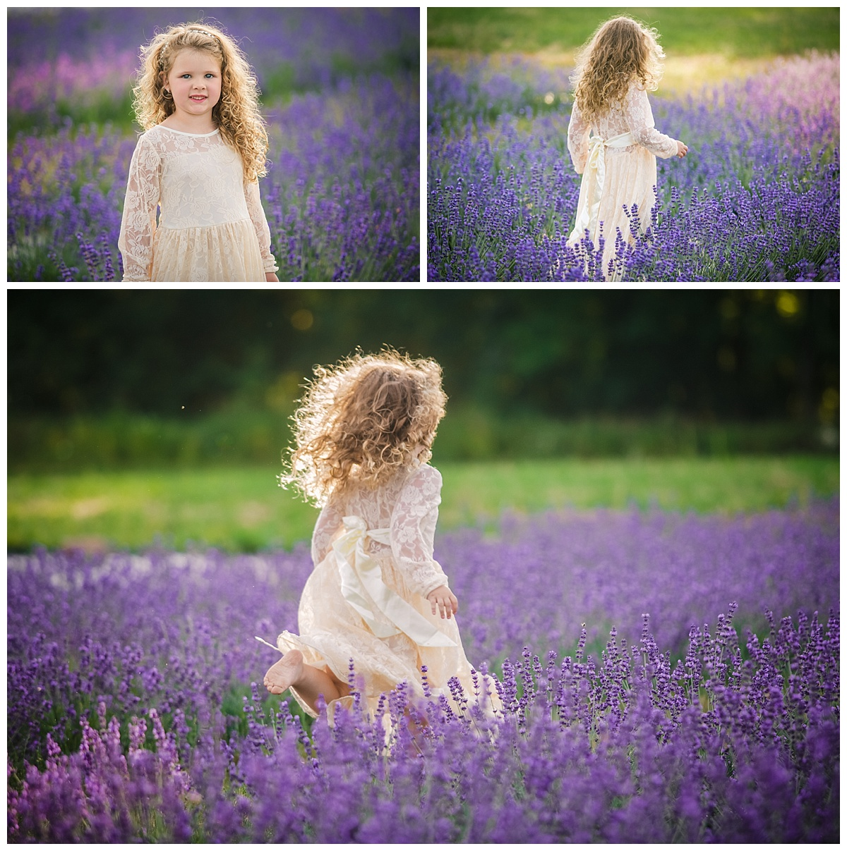 Joy of Life Photography Lavender Sessions 4