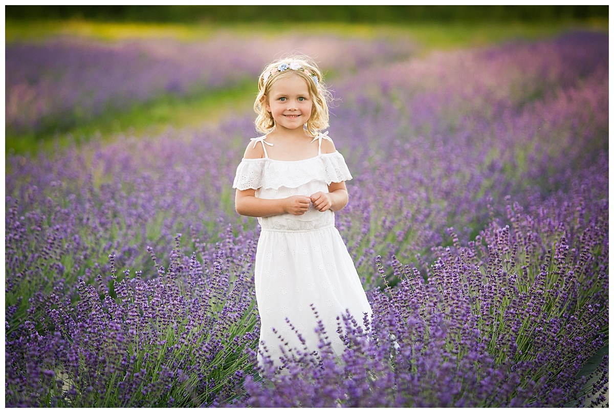 Joy of Life Photography Orangeville Ontario Lavender