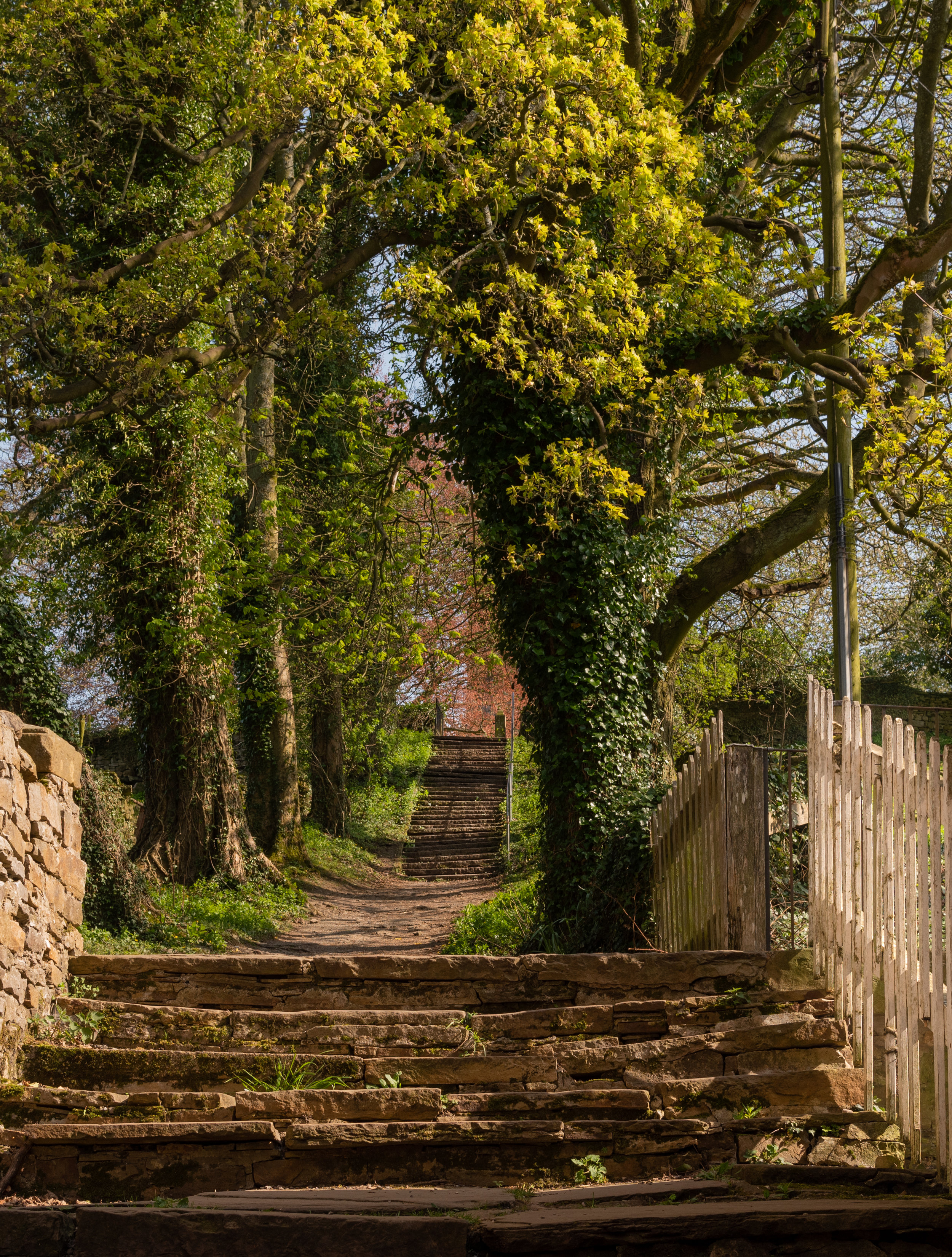 Footpath leading up to St Andrew's Church, Aysgarth