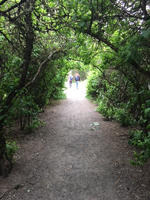 Entering Discovery Park