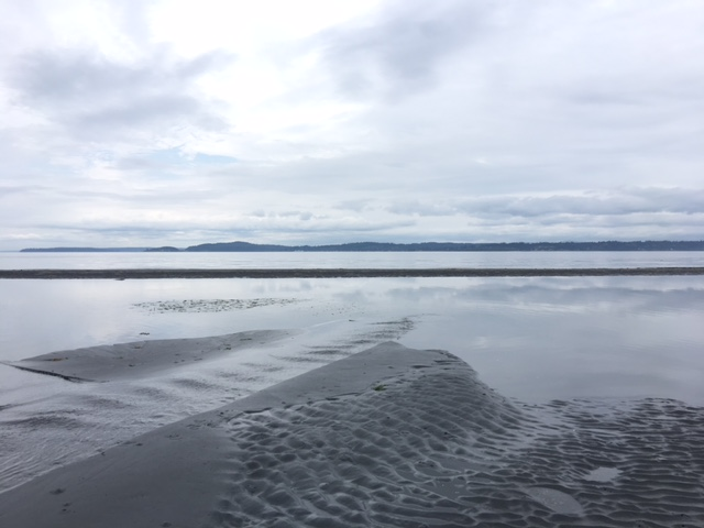 The -2.9 tide on Puget Sound on May 18, 2018