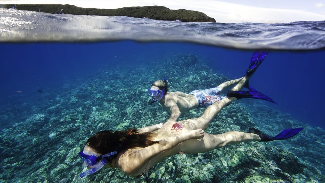 PWF-Wild-Side-Snorkel-2.jpg