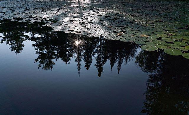 Morning on the water 🛶 #exploreontario