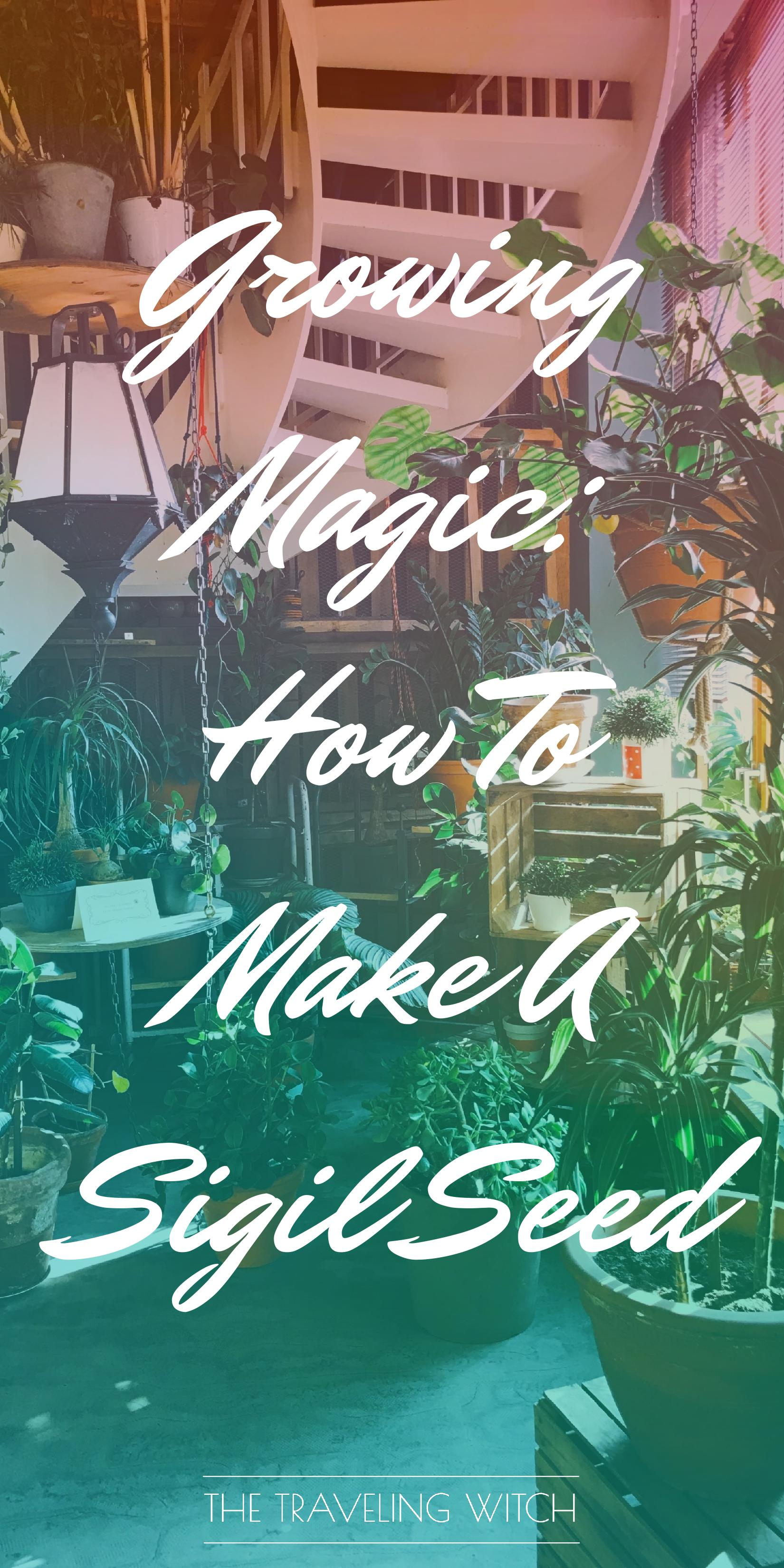 Growing Magic: How To Make A Sigil Seed // Witchcraft // Magic // The Traveling Witch