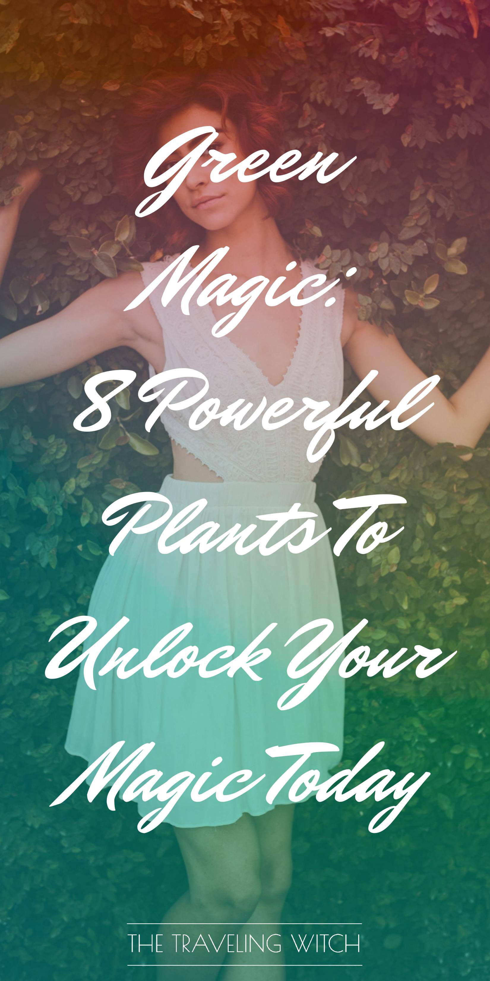 Green Magic: 8 Powerful Plants To Unlock Your Magic Today by The Traveling Witch #Witchcraft #Magic