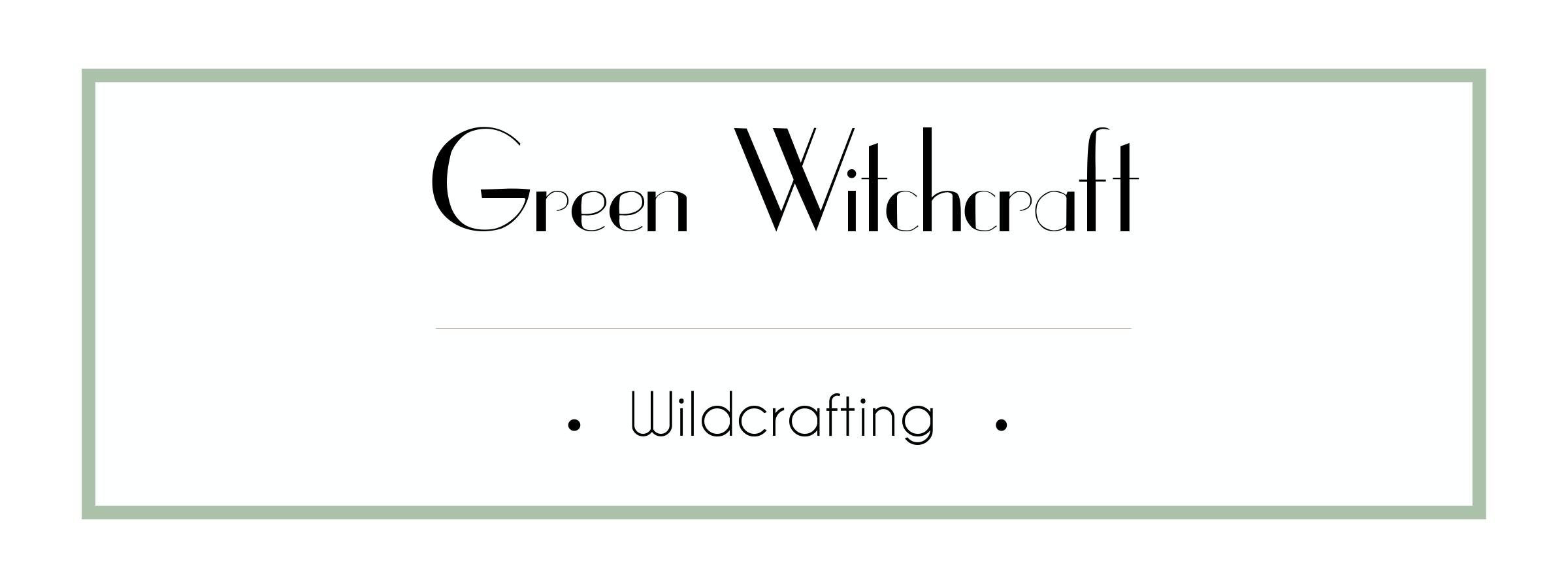 Green Witchcraft Course - Wildcrafting