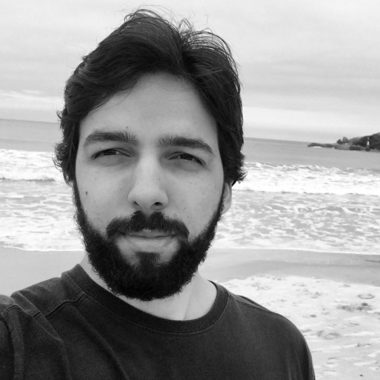 Henrique Chehad, Software Engineer