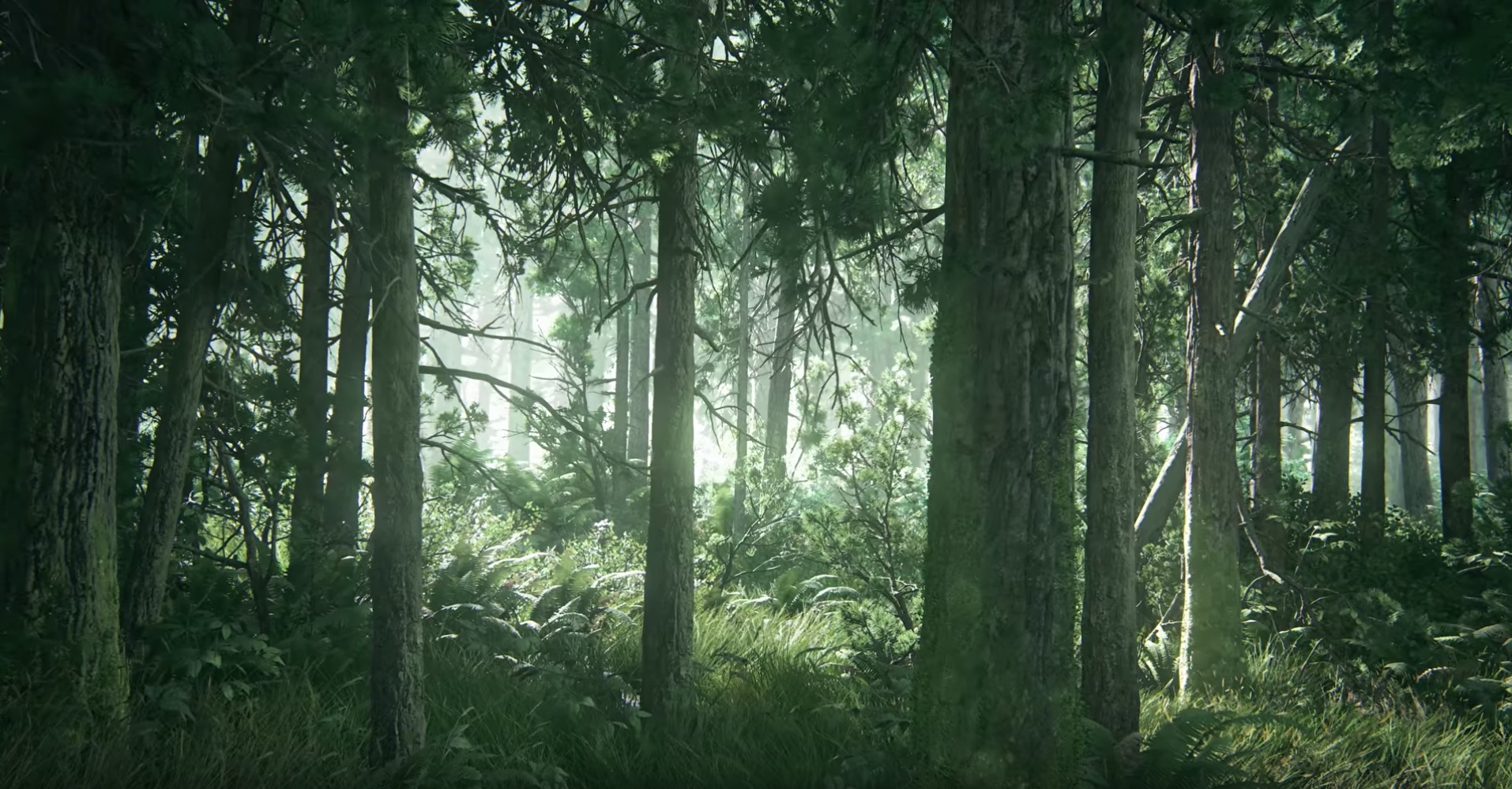 The trailer opens on a shot of a forest; this betrays no details about what the game is, the time period or setting. The only thing we can glean from this shot is this is a big budget AAA game which has very good looking foliage.